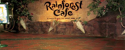 qp_head_rainforest